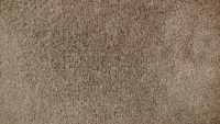 b_200_113_16777215_00_images_carpet_plush_samples_beige.jpg