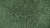 b_200_113_16777215_00_images_carpet_plush_samples_green-carpet.jpg